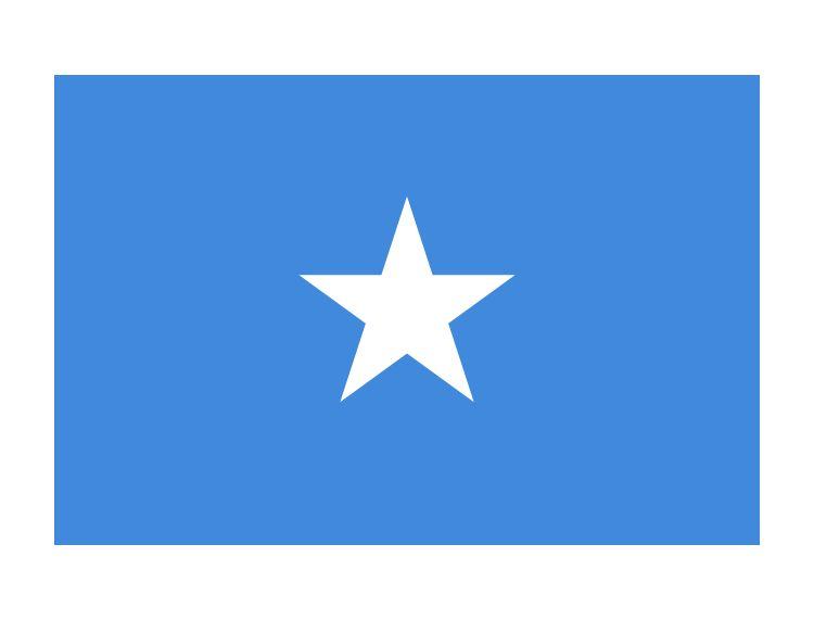 廣東至索馬里港口(BERBERA,MOGADISHU)航線介紹: